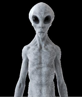 Alien 750 01